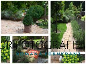 Der Garten - ein  überaus spannendes neues Kreativ-Terrain . Mittlerweile habe ich um die 30 Tonnen Pflastersteine und Splitt bewegt...