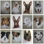 Strich für Strich - Auftragsarbeiten für Hundeliebhaber